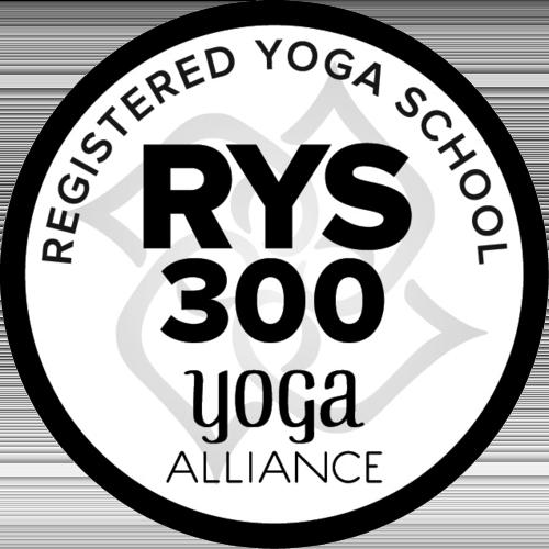 USA - RYS 300-AROUND-BLACK.png
