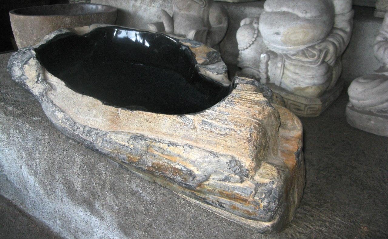 Fossil012e.jpg