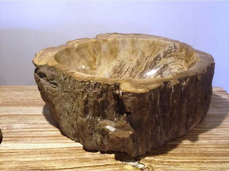 Fossil Woody1.png