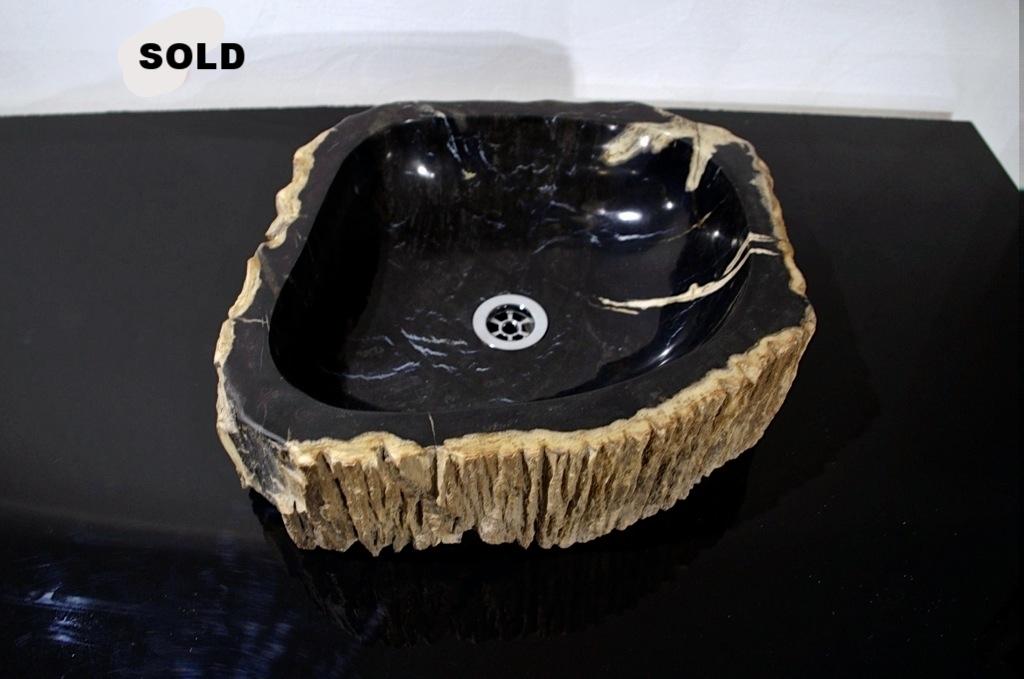 Раковина из окаменелого дерева