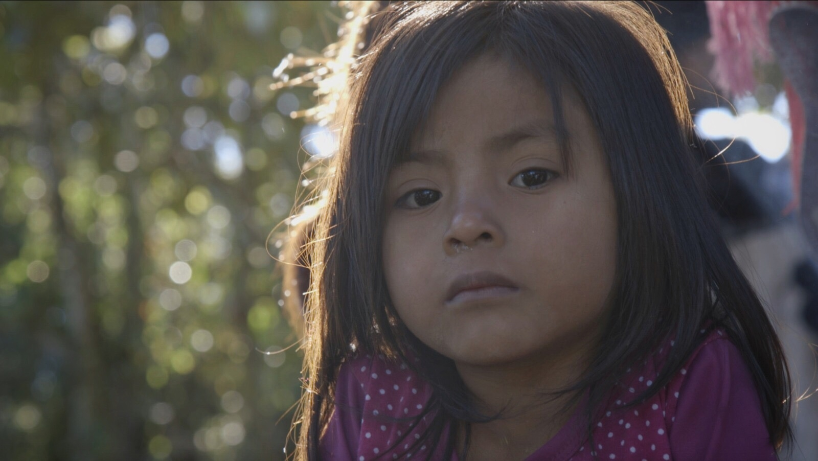 Since mid-October 2017, more than 5000 Tzotzil indigenous people in Chalchihuitán have been displaced by paramilitary activity triggered by a territorial dispute. Automatic gunfire, burnt houses, and people hiding in the mountains for 2-3 months. This is the same set of events that happened before the Acteal massacre 20 years ago in Chiapas, Mexico, when 45 peaceful Tzotzil indigenous people were killed by PRI-aligned paramilitaries while local security forces stood by and let it happen.   Here  are some testimonials I filmed in Chalchihuitán, the day before the Acteal Anniversary.  And here is the  full report  on Animal Politico which came out the day after they left the camps.  Read my colleague Katie Schlechter's report that came out on the anniversary of the Acteal massacre here:  http://www.aljazeera.com/news/2017/12/mexico-renewed-land-dispute-displaces-5000-chiapas-171222163355229.html