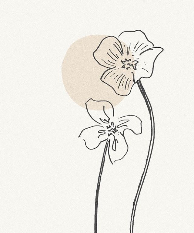 A peek at some custom illustrations for one of our brands. Happy Sunday Friends 🌞 #studioantheia