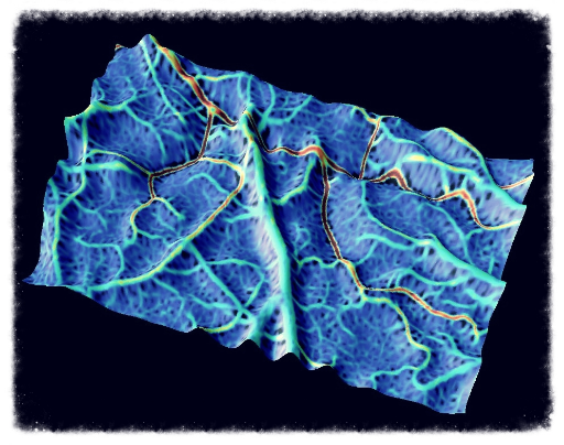 Surface plot of cerebral blood flow in the mouse cortex acquired with laser speckle imaging [ Link to paper ].