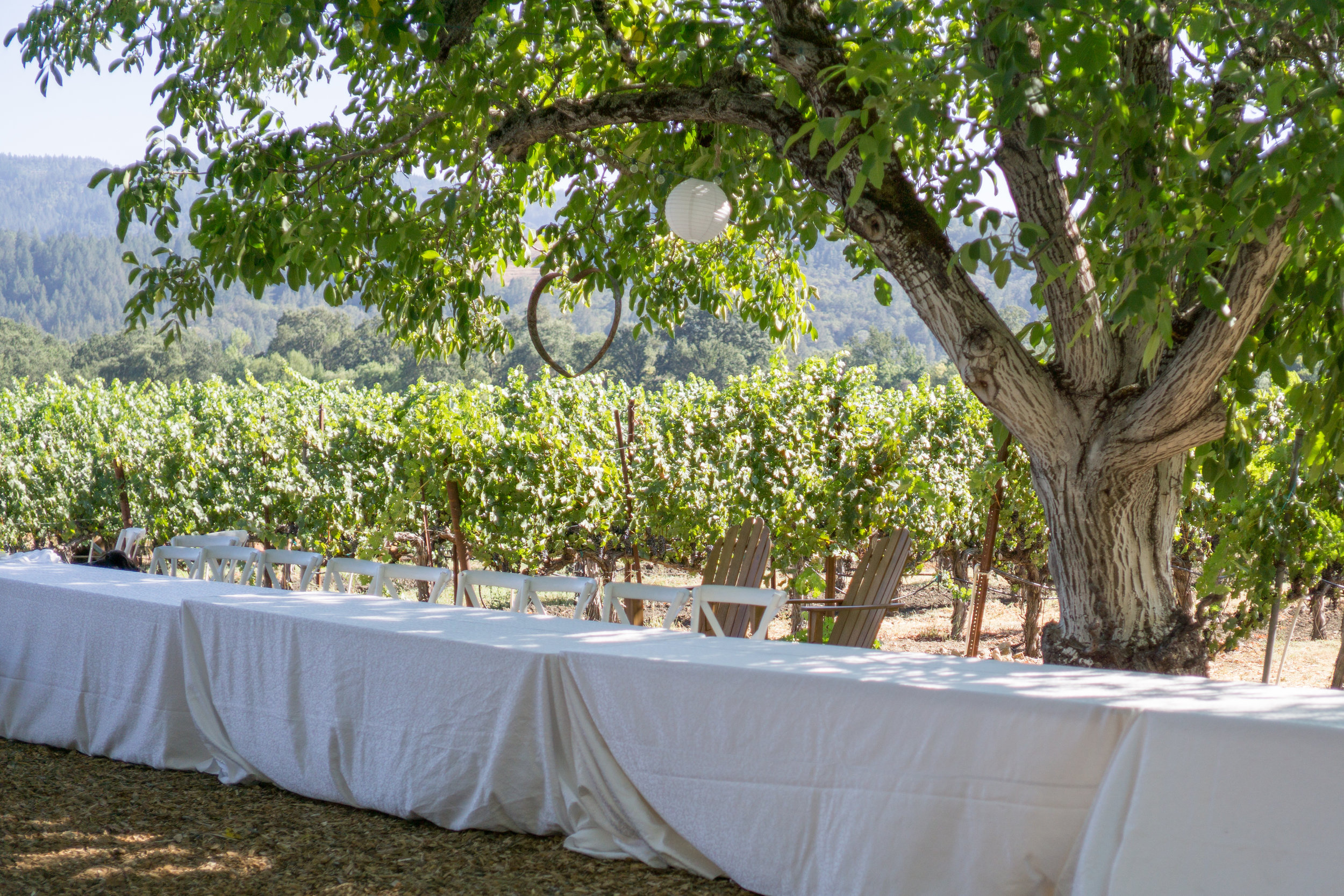 I love a winery that you can picnic at.