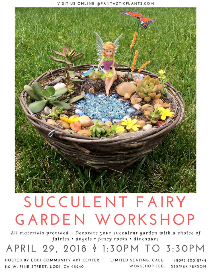SucculentFairyWorkshop_Full.jpg