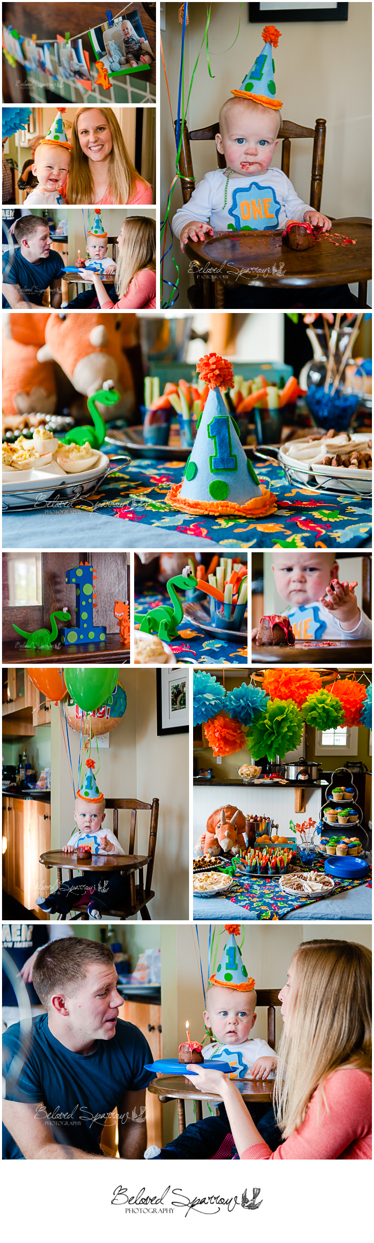 Peachtree City First Birthday Photographer