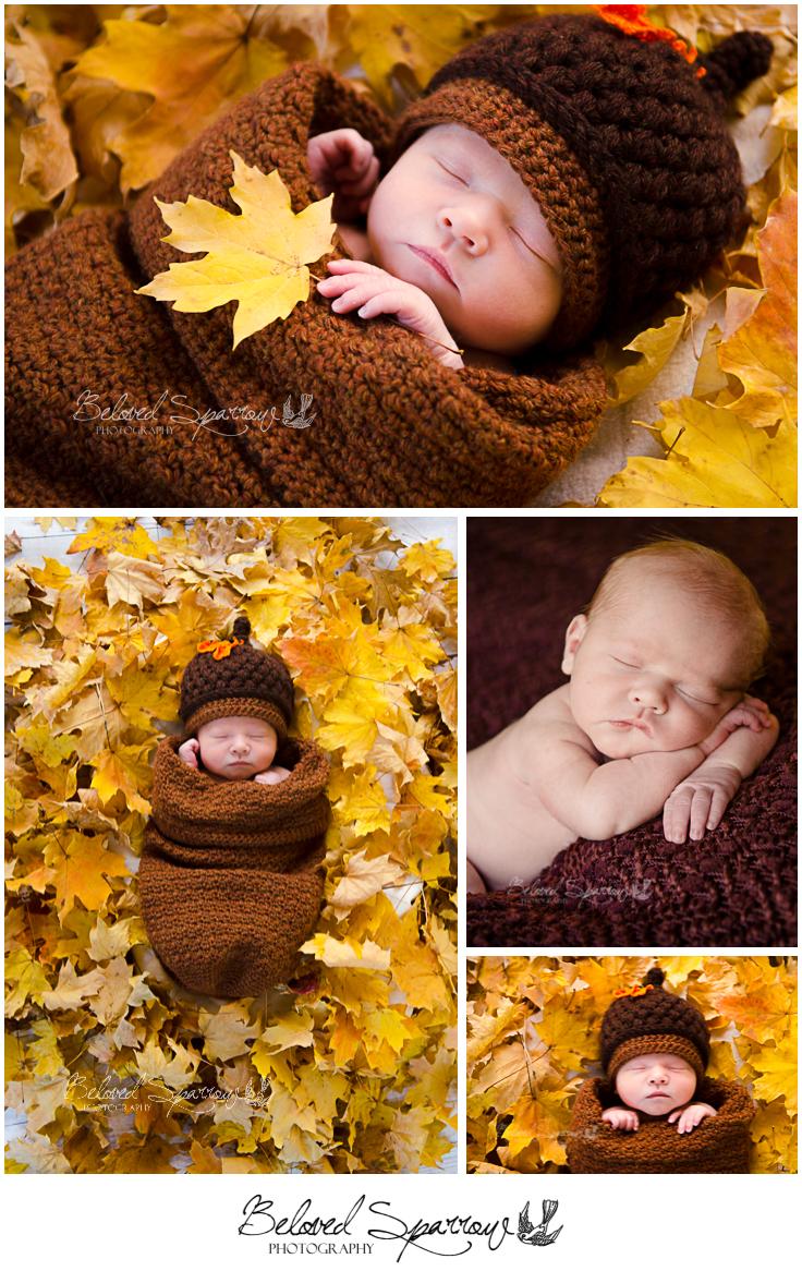Newborn Professional Photographer in Peachtree City
