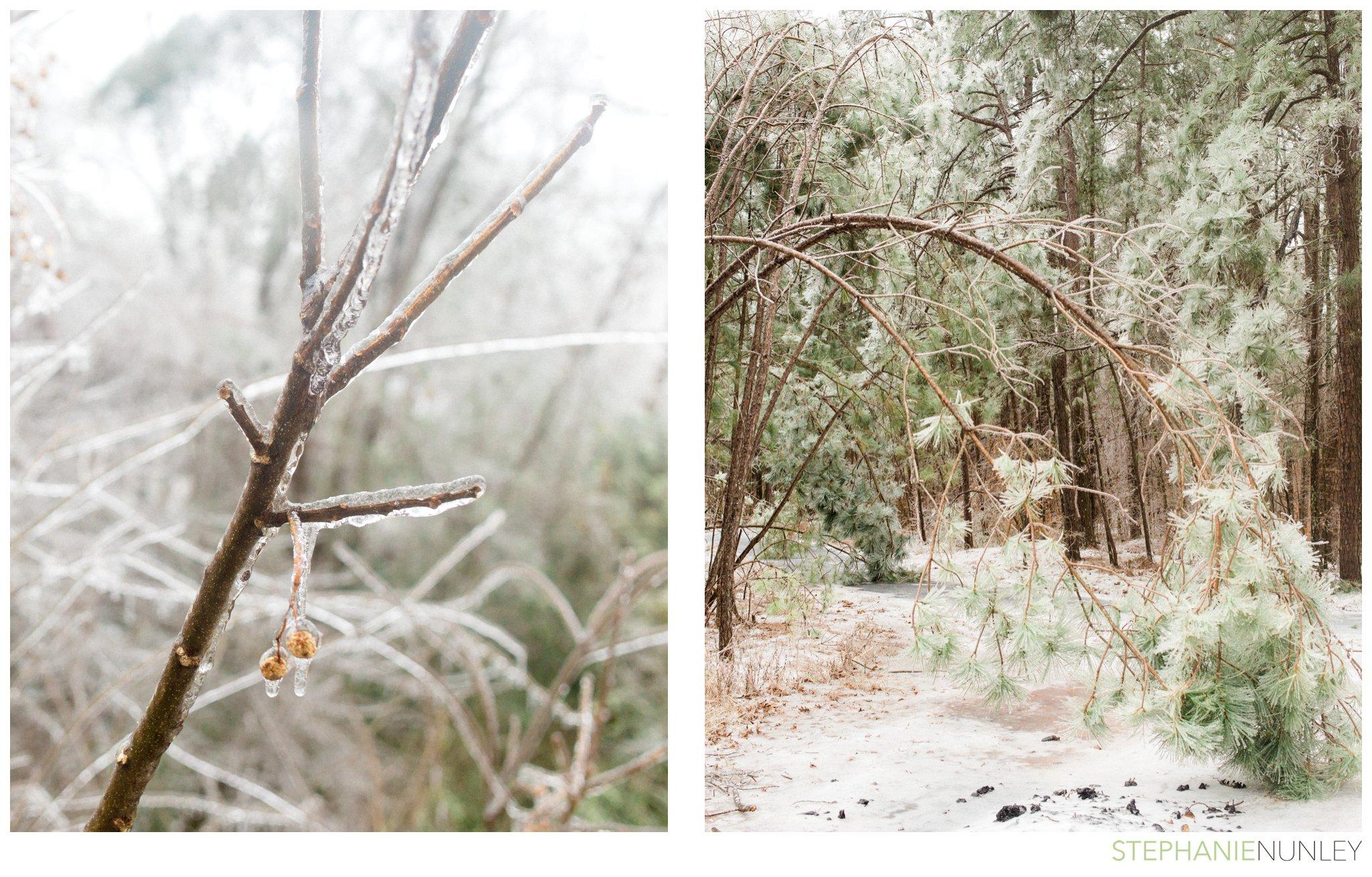 arkansas-winter-scenery-001.jpg
