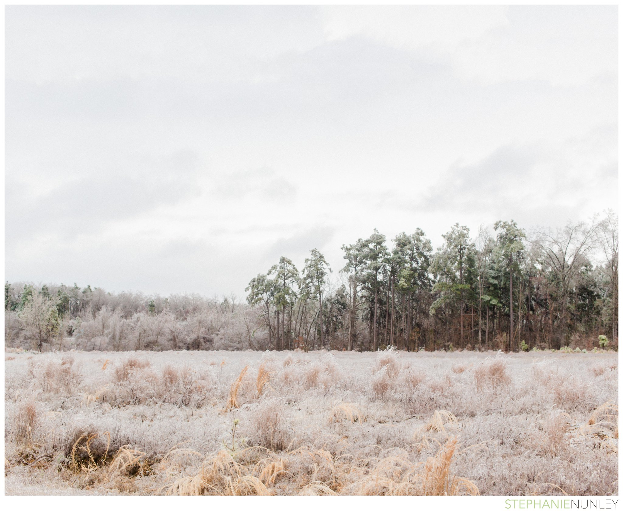 arkansas-winter-scenery-005.jpg