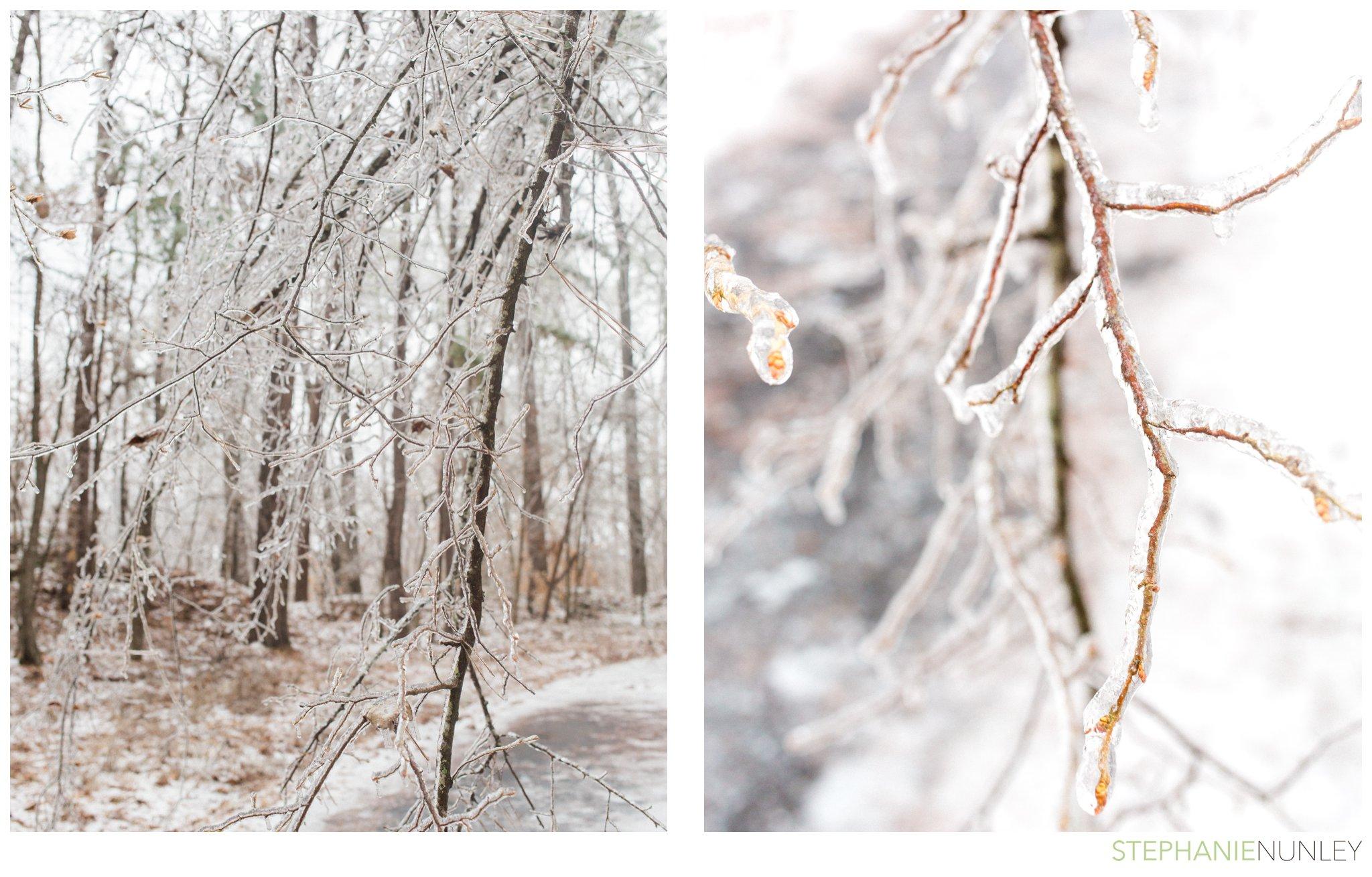 arkansas-winter-scenery-006.jpg