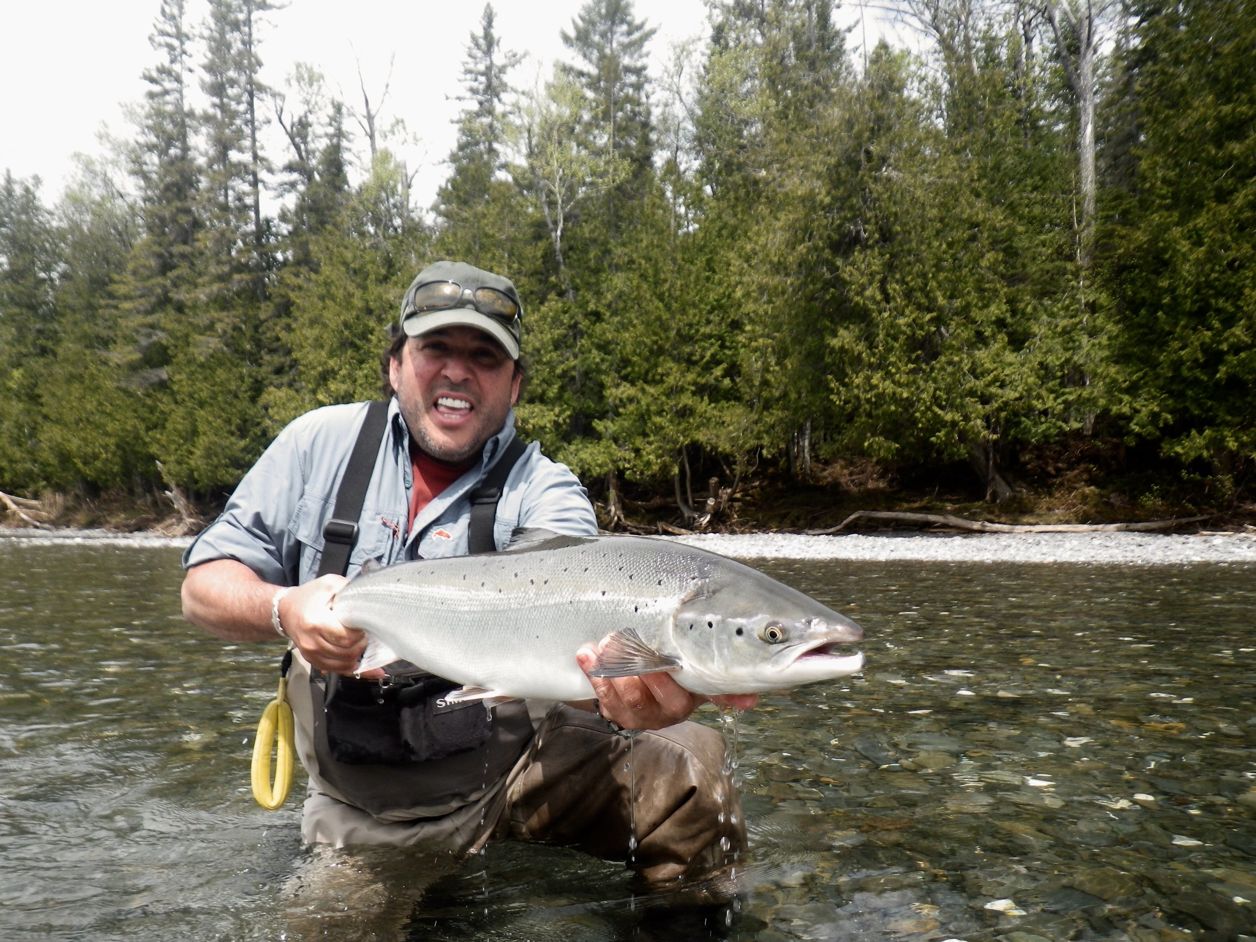 Joe Colette with a nie early season salmon,  congratulations  Joe!