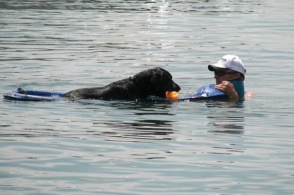 Pontiac_Cove_Marina_on_Bull_Shoals_Lake-4.jpg
