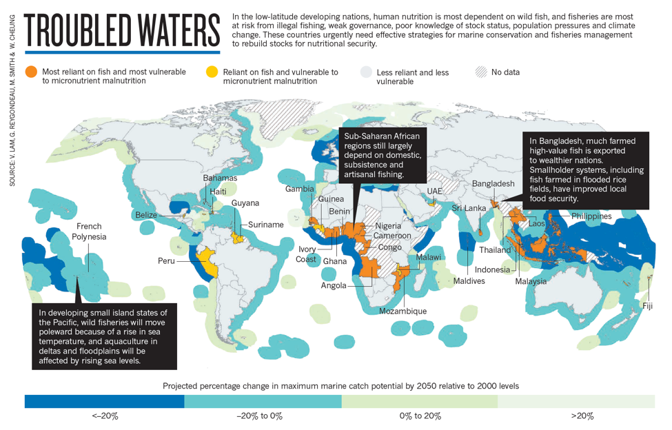 Projected changes in marine catch globally.