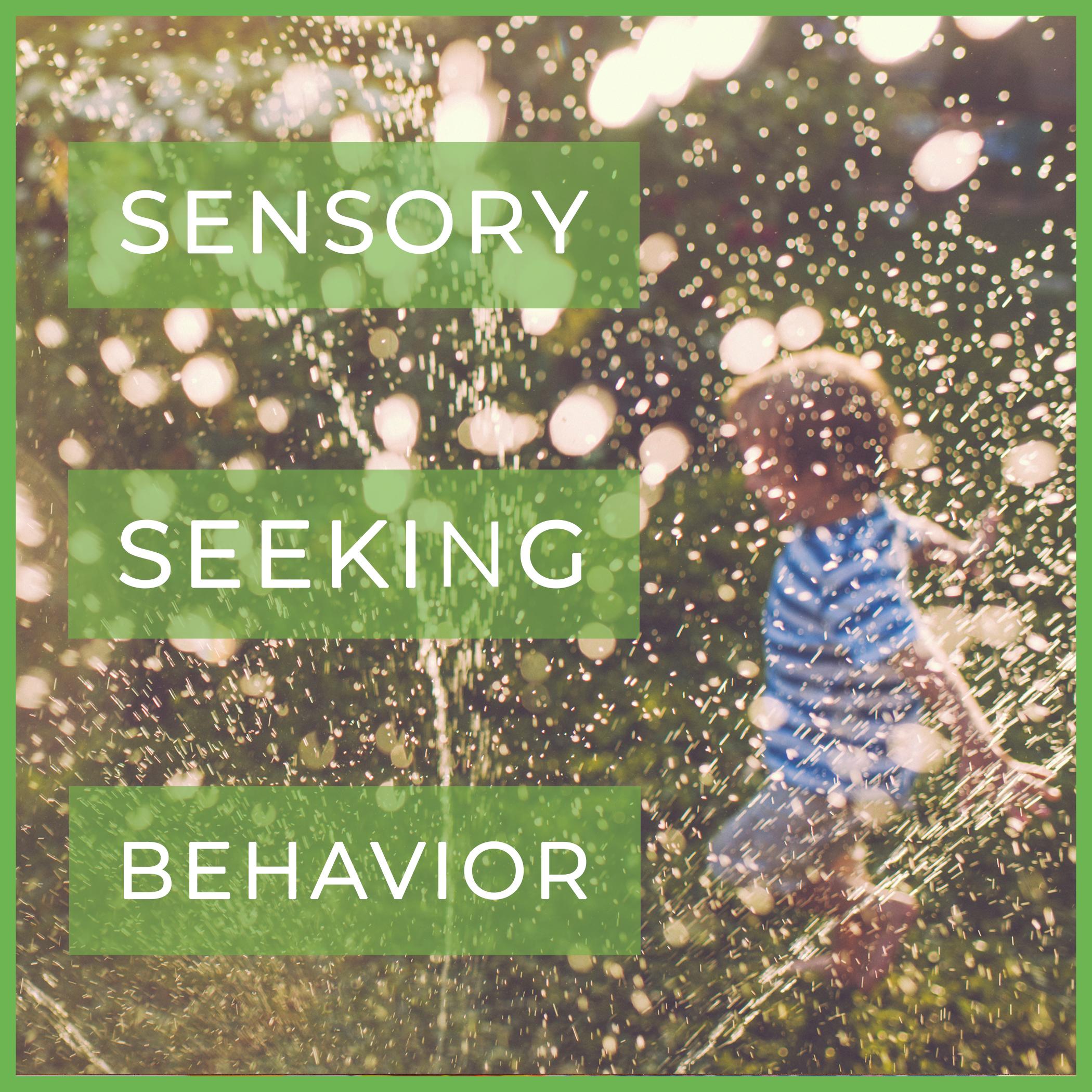 sensory seeking behavior.jpg