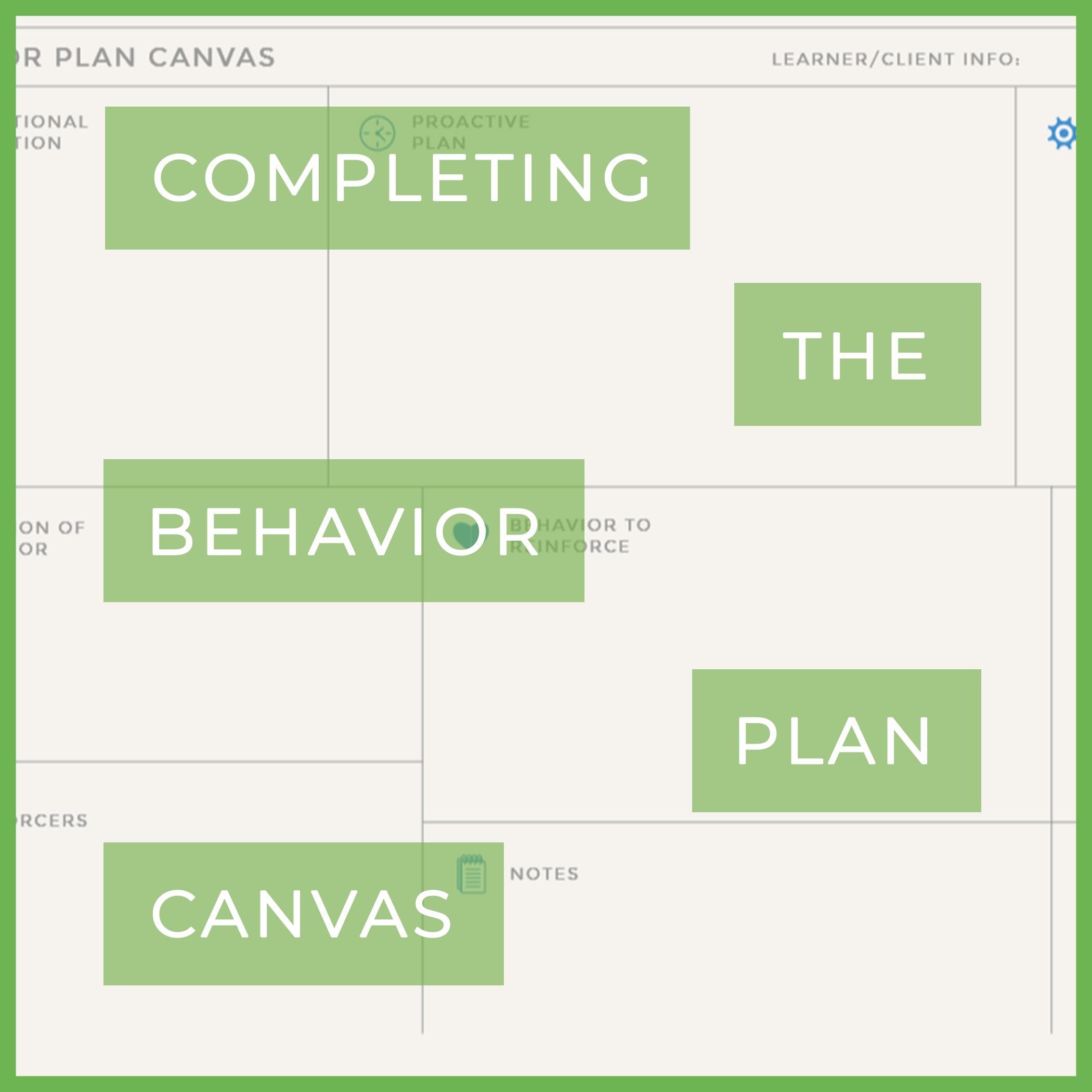 completing behavior plan canvas.png