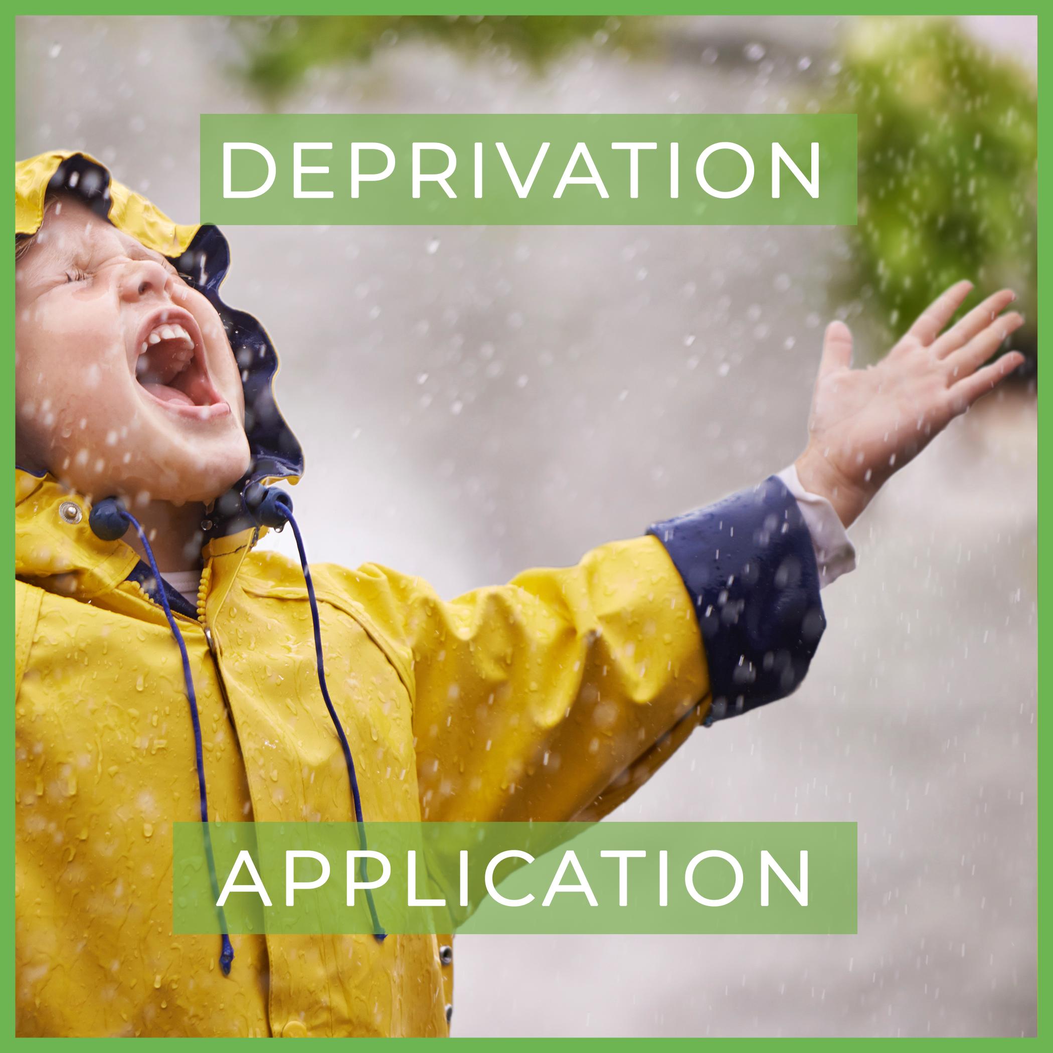 deprivation application.png