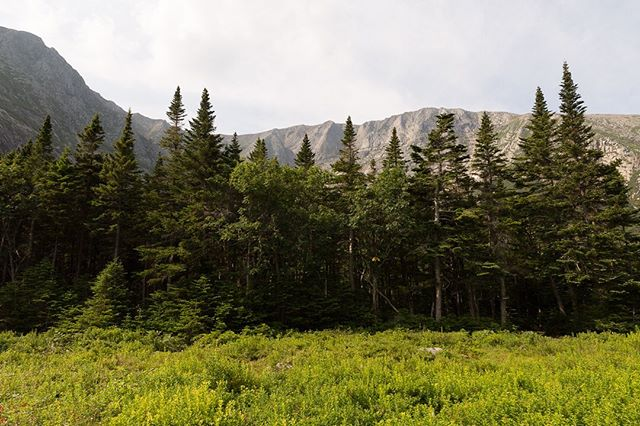 """Thoreau called Katahdin """"that Earth of which we have heard, made out of Chaos and Old Night."""" I'm not sure what he meant, but his experience certainly sounds less pleasant than ours."""