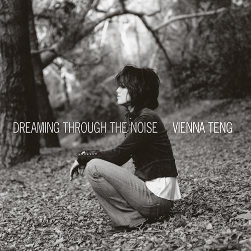 steven_jurgensmeyer_vienna_teng_dreaming_through_the_noise_500x500.jpg