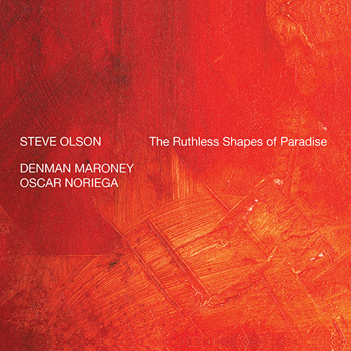 steven_jurgensmeyer_steve_olson_the_ruthless_shapes_of_paradise_500x500.jpg