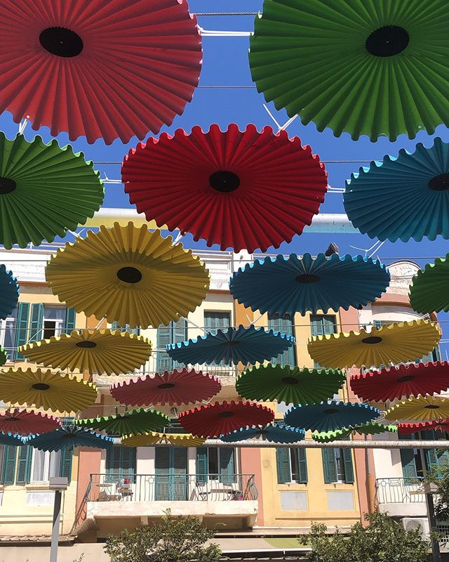 ☂ Parasols at the Ha Carmel market in Tel Aviv. . . . #travel #telaviv #darlingdaily #israel #visitisrael #umbrella #travelblogger #foodbloggers #flashesofdelight #livethelittlethings #nothingisordinary #travelgram #foodie #traveldeeper #culturetrip #gglocalgems #onthetable @onthetable_project @dametraveler @culturetripfood @condenasttraveller #prettylittletrips #mydomainetravels @purewowtravel @frommers @dametraveler #lpfood #jaffa @visit_israel #telavivcity #travelpics #beautifuldestinations @beautifuldestinations #ig_travel #instagram_israel @visit_israel @culturetrip