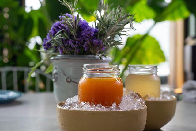 ¿Sabías que la #Kombucha está llena de vida?  #Probiotics #Wellness #DejateConsentir #CafeO
