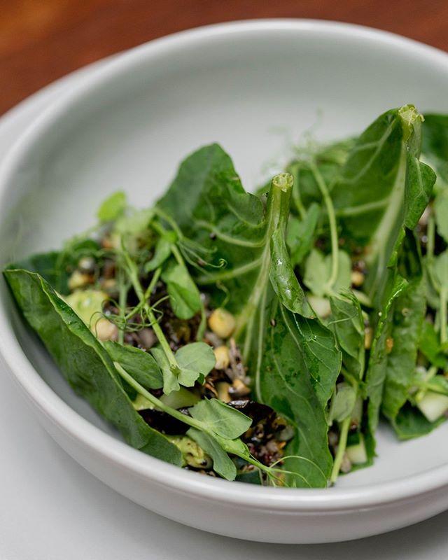 Cotidiano | Taquitos de kale, arroz salvaje, quinoa negra, maíz azul…  #Vegan #Cotidiano #DejateConsentir #CafeO