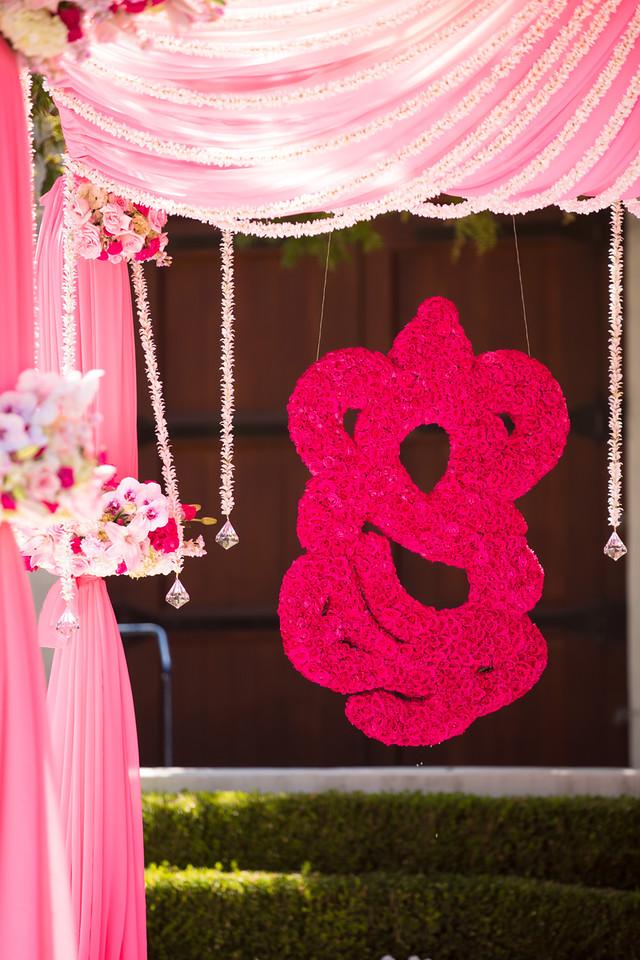 Puja_Delaney_Wedding-258-X2.jpg