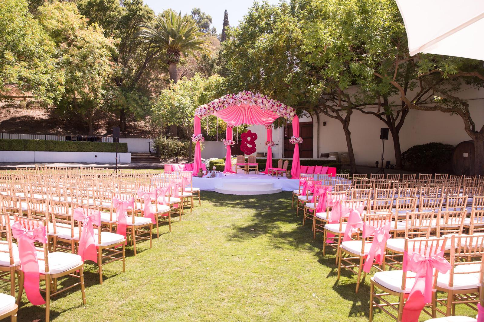 Puja_Delaney_Wedding-454-X3.jpg