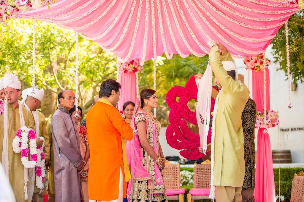 Puja_Delaney_Wedding-714-XL.jpg