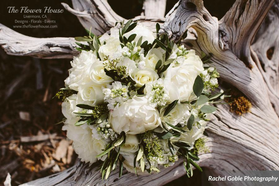 wm.Ditto_Ditto_Rachel_Goble_Photography_KellieandRyder46_low.jpg