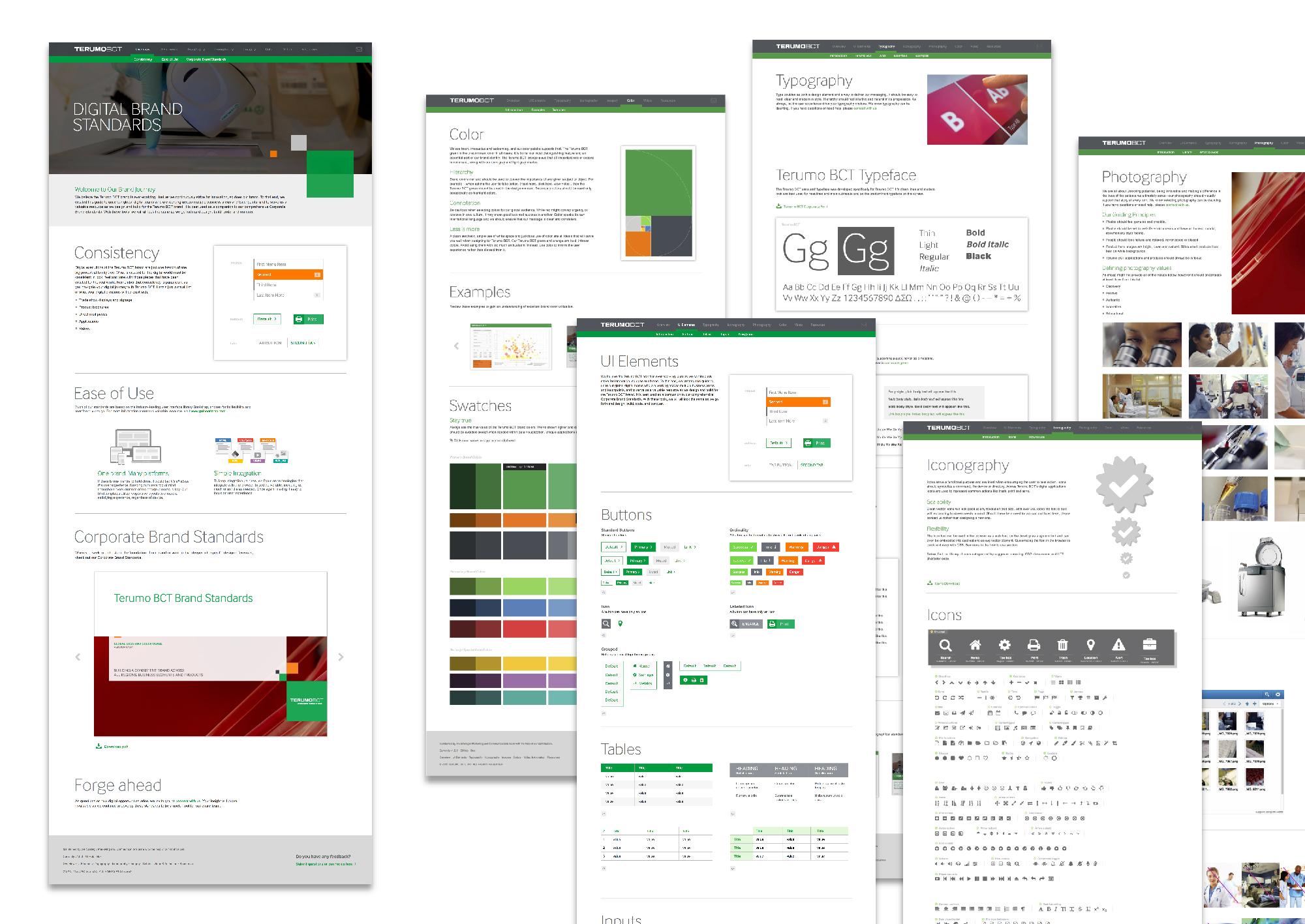 BCT-DigitalBrandStandards-portfolio-asset-01.jpg