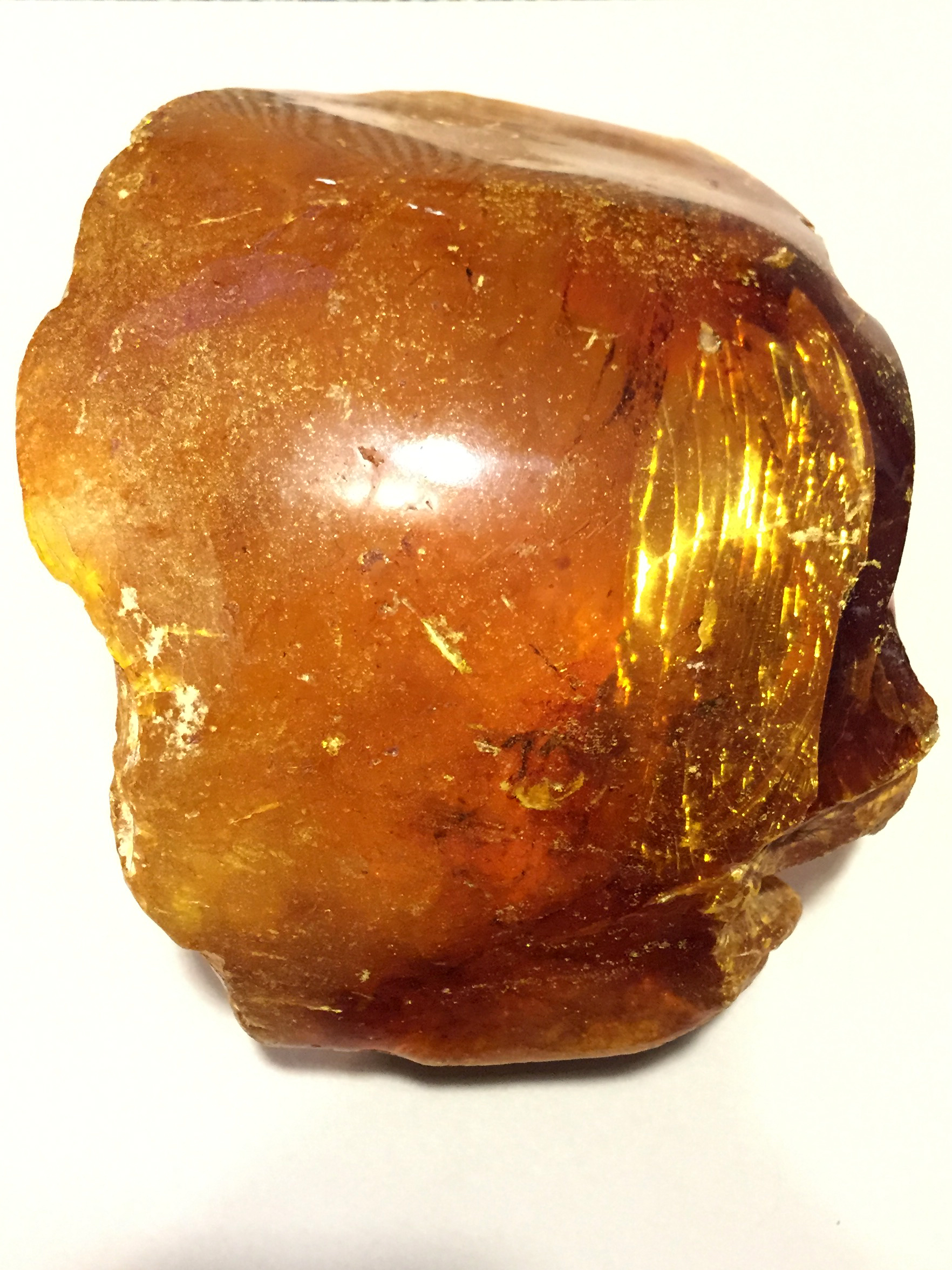 Fossilised Kauri Gum from Northland New Zealand