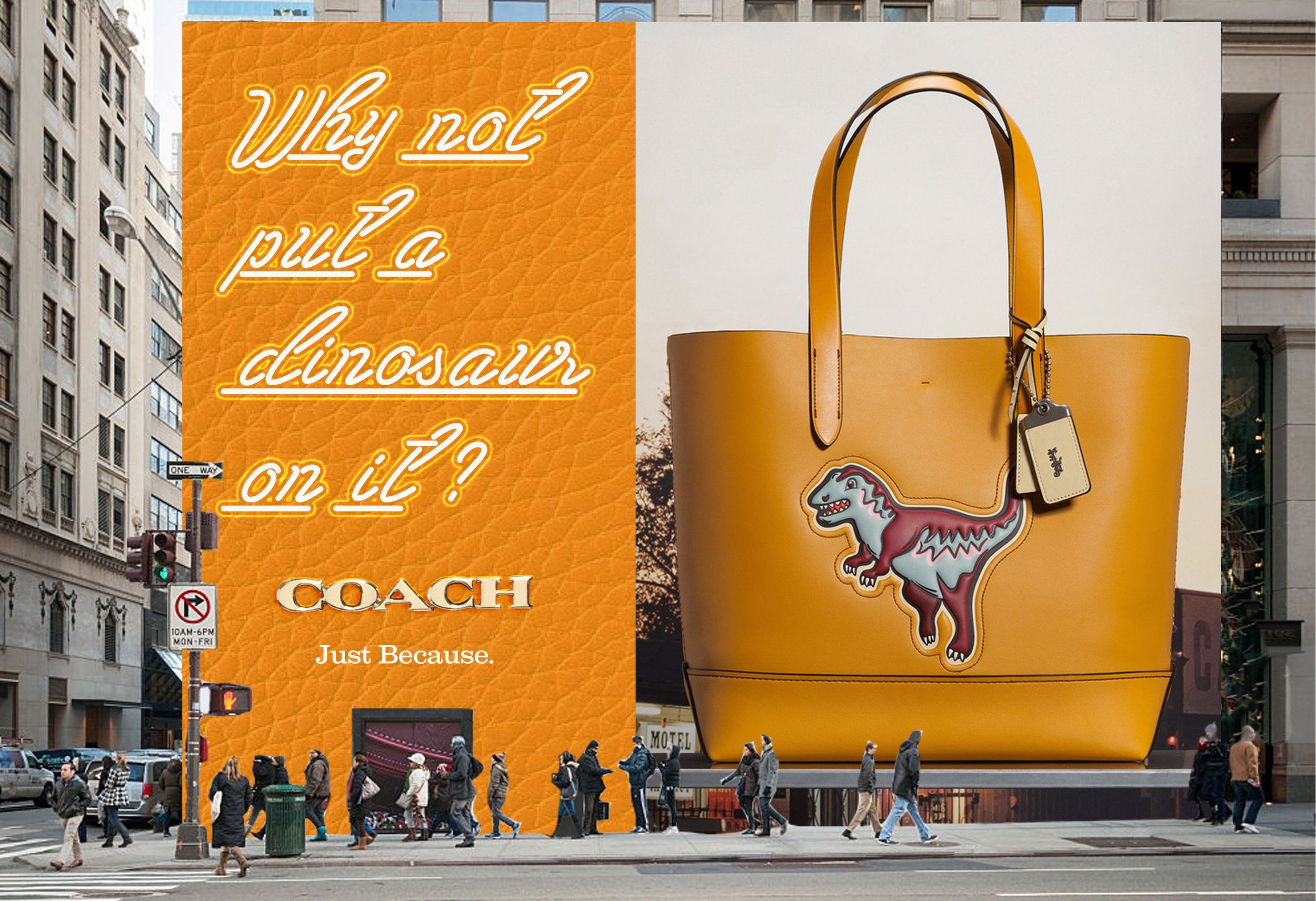 Coach Big OOH leather.jpg