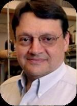 Marco Ciufolini, PhD - Director & Scientific Advisor