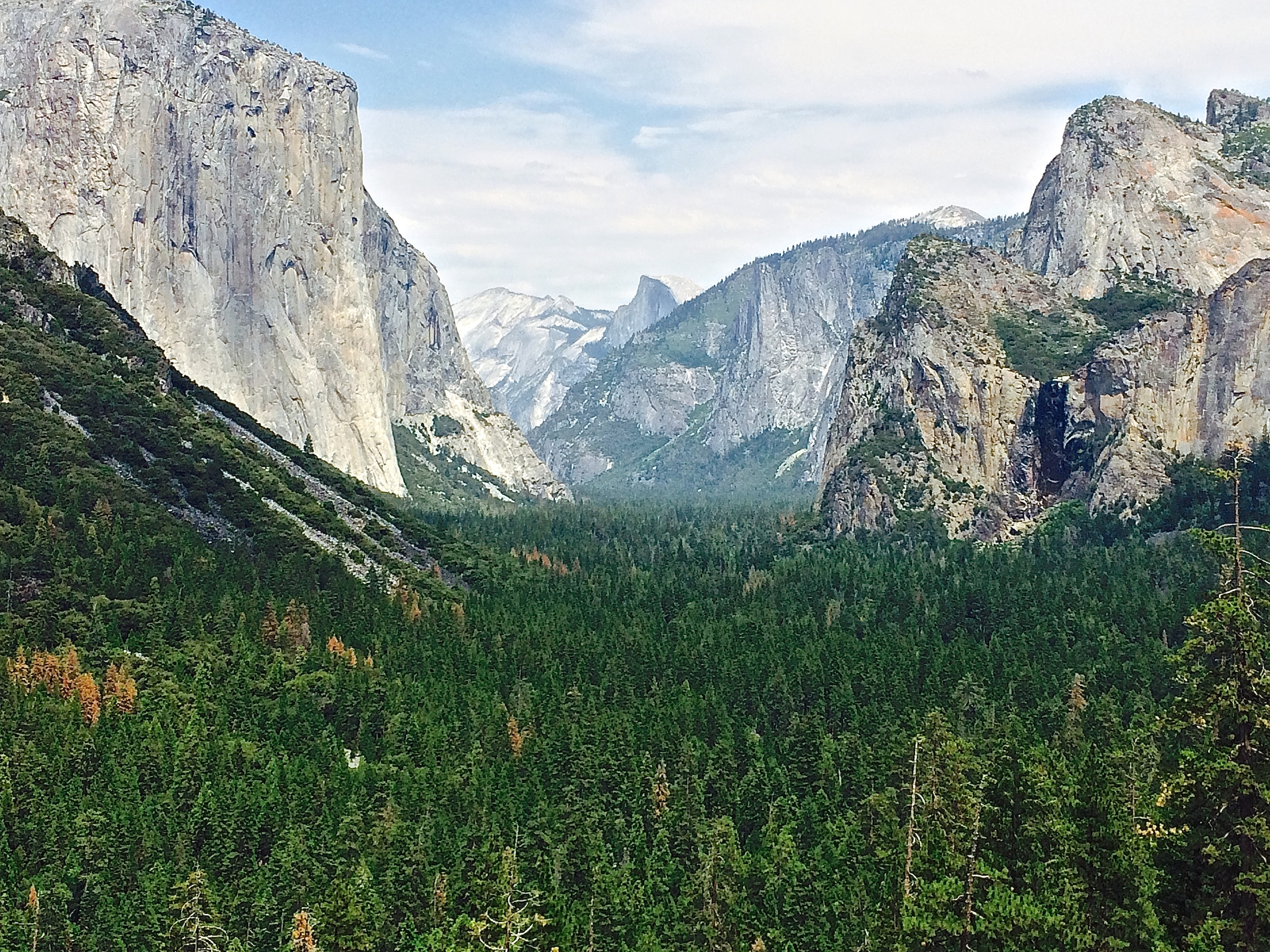 The view down Yosemite Valley