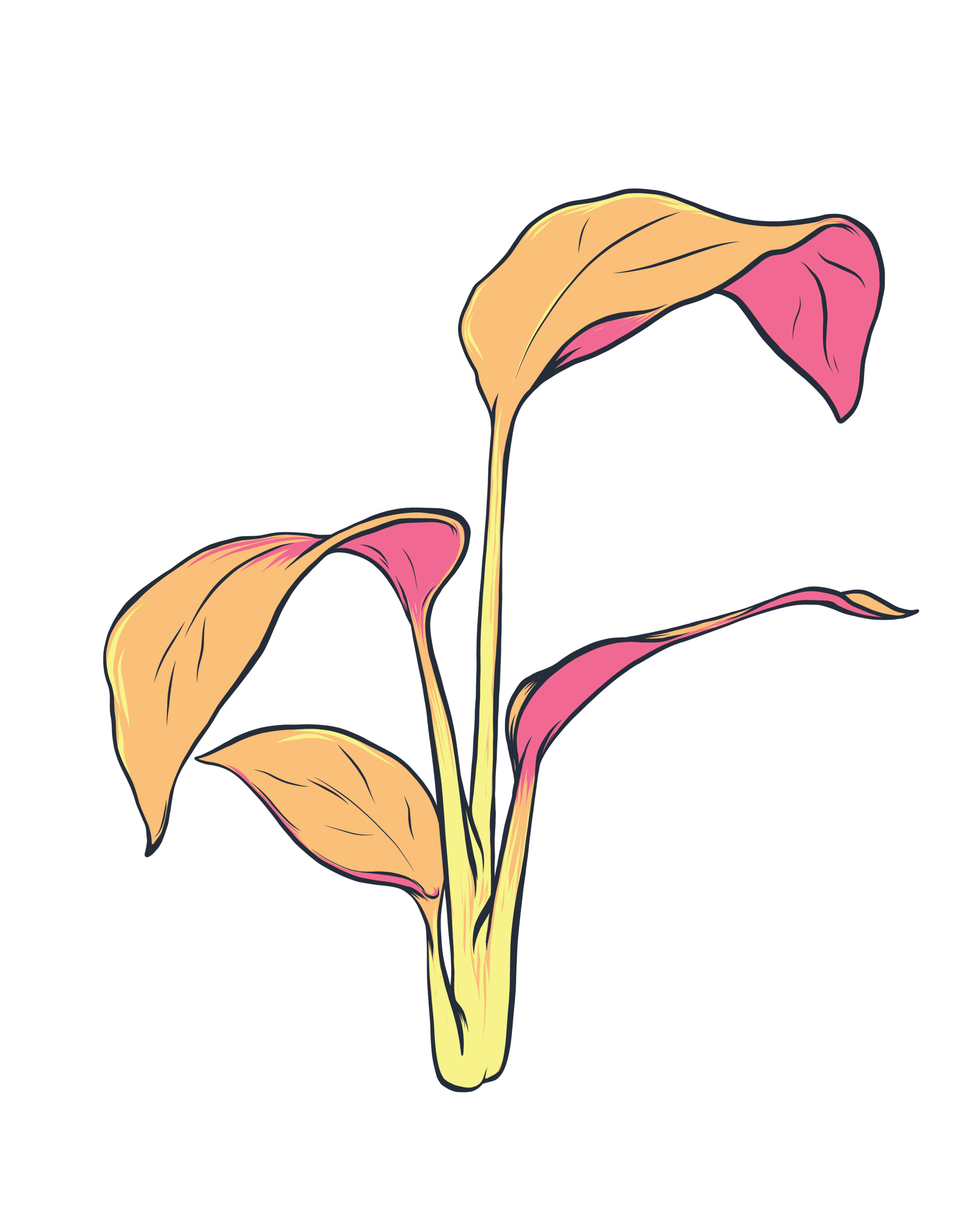 Artboard 3plants.png