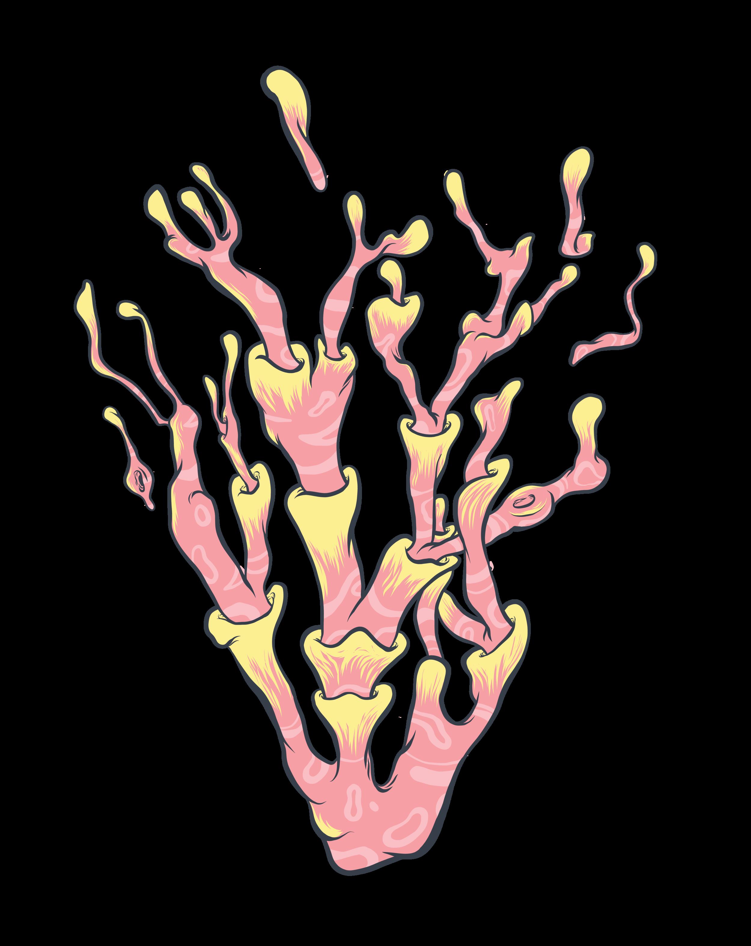 Artboard 11plants.png