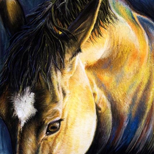 Risa_Kent-Horse_Portrait_Gallery