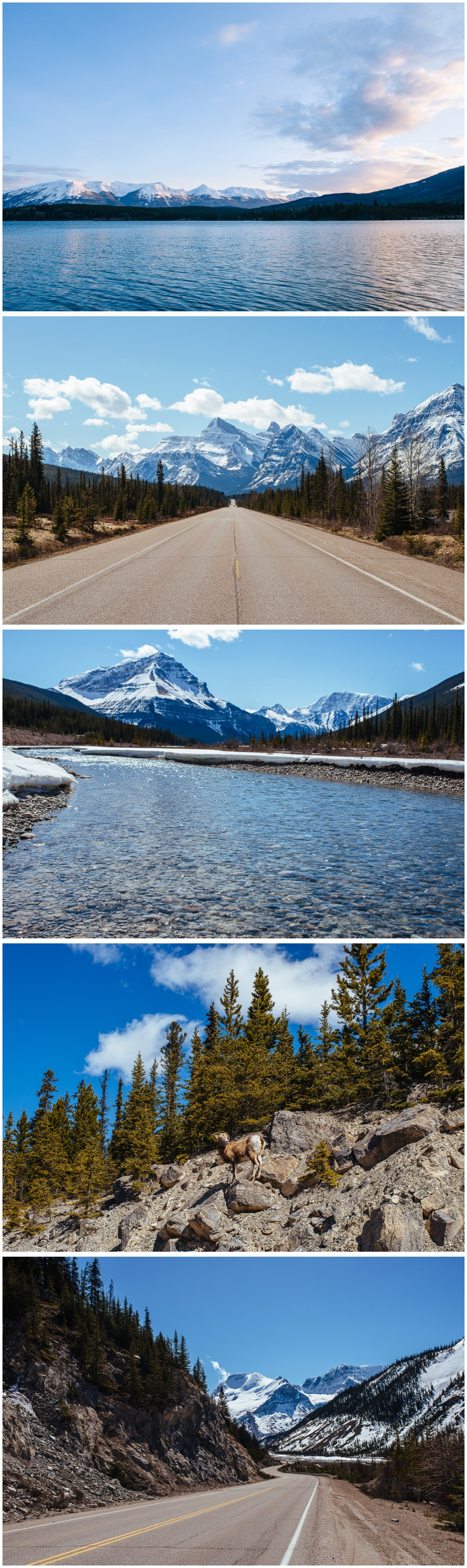 Canada Travels www.trentandjessie.com_0025.jpg