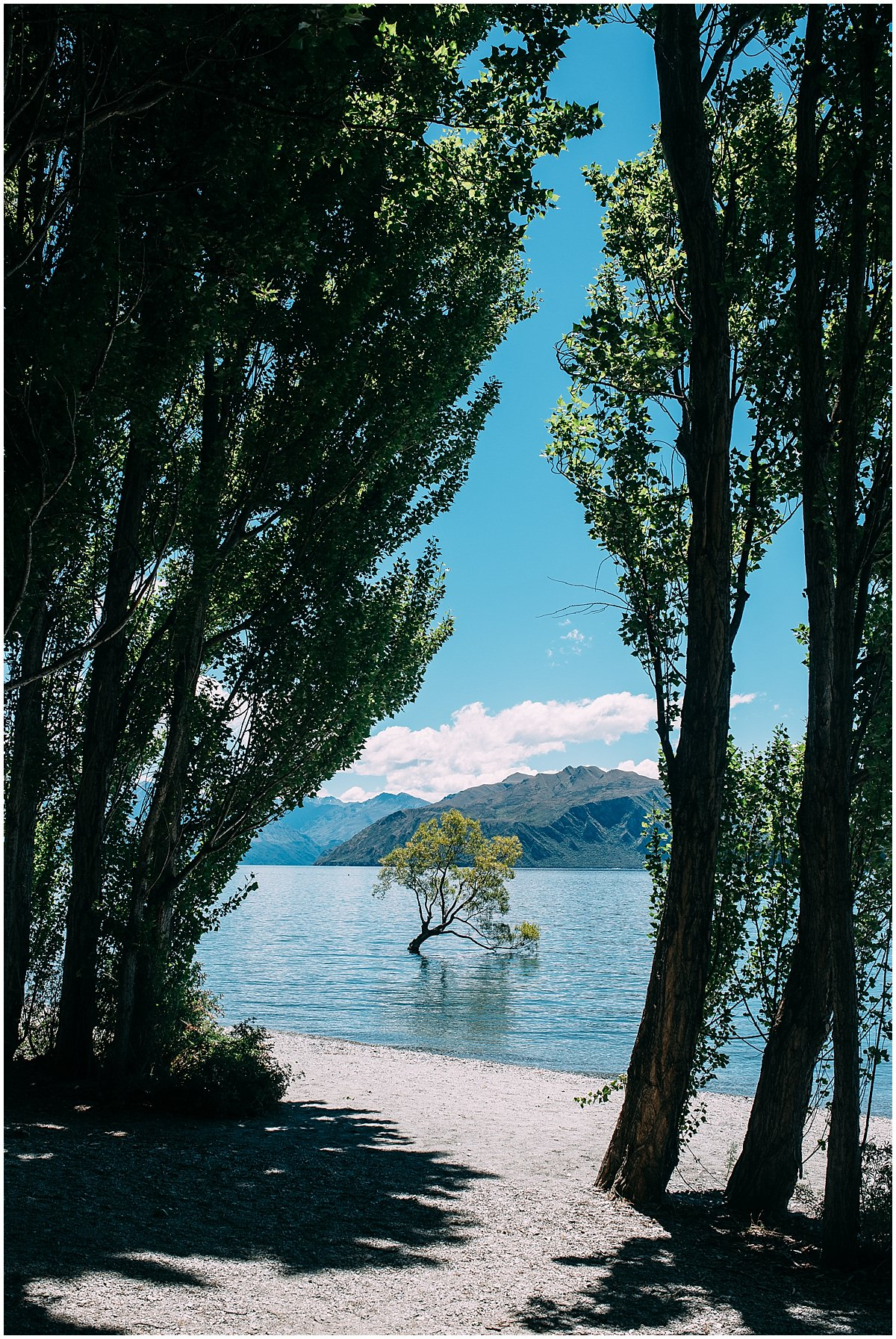 New_Zealand-www.trentandjessie.com_0016.jpg