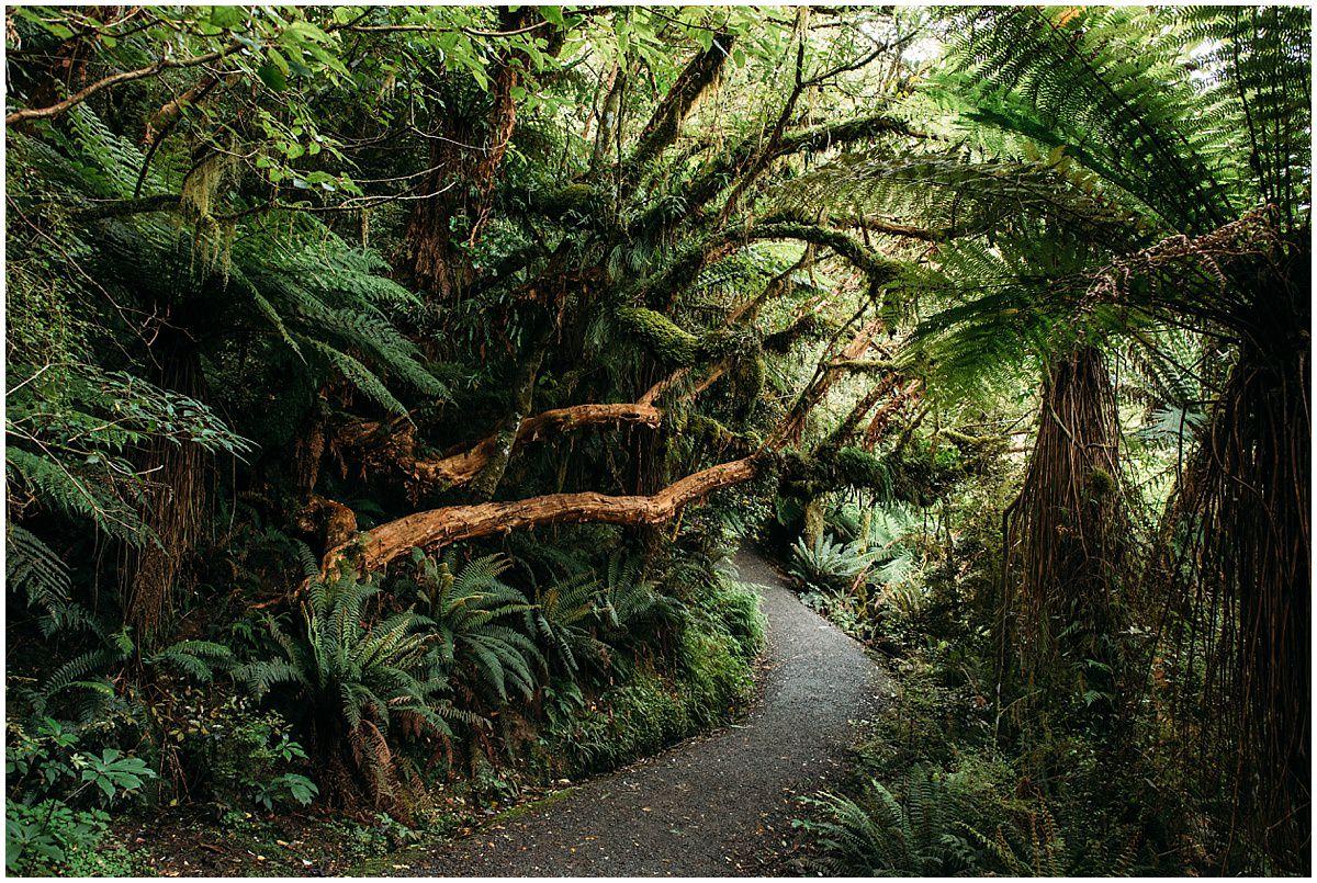 New_Zealand-www.trentandjessie.com_0030.jpg