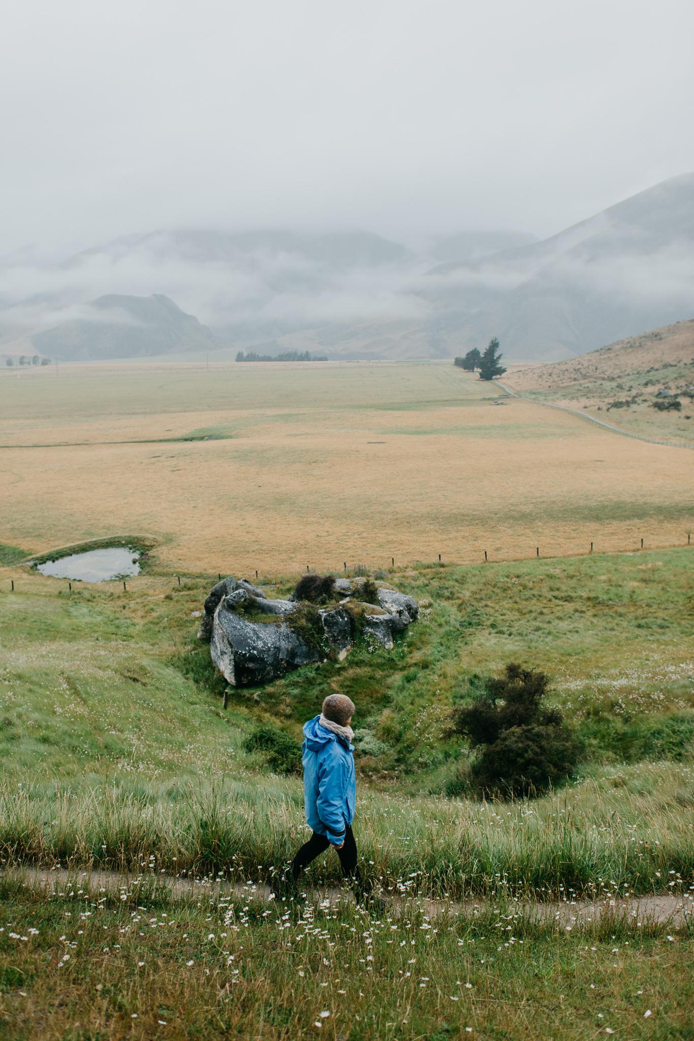 NZ_2016-5.jpg