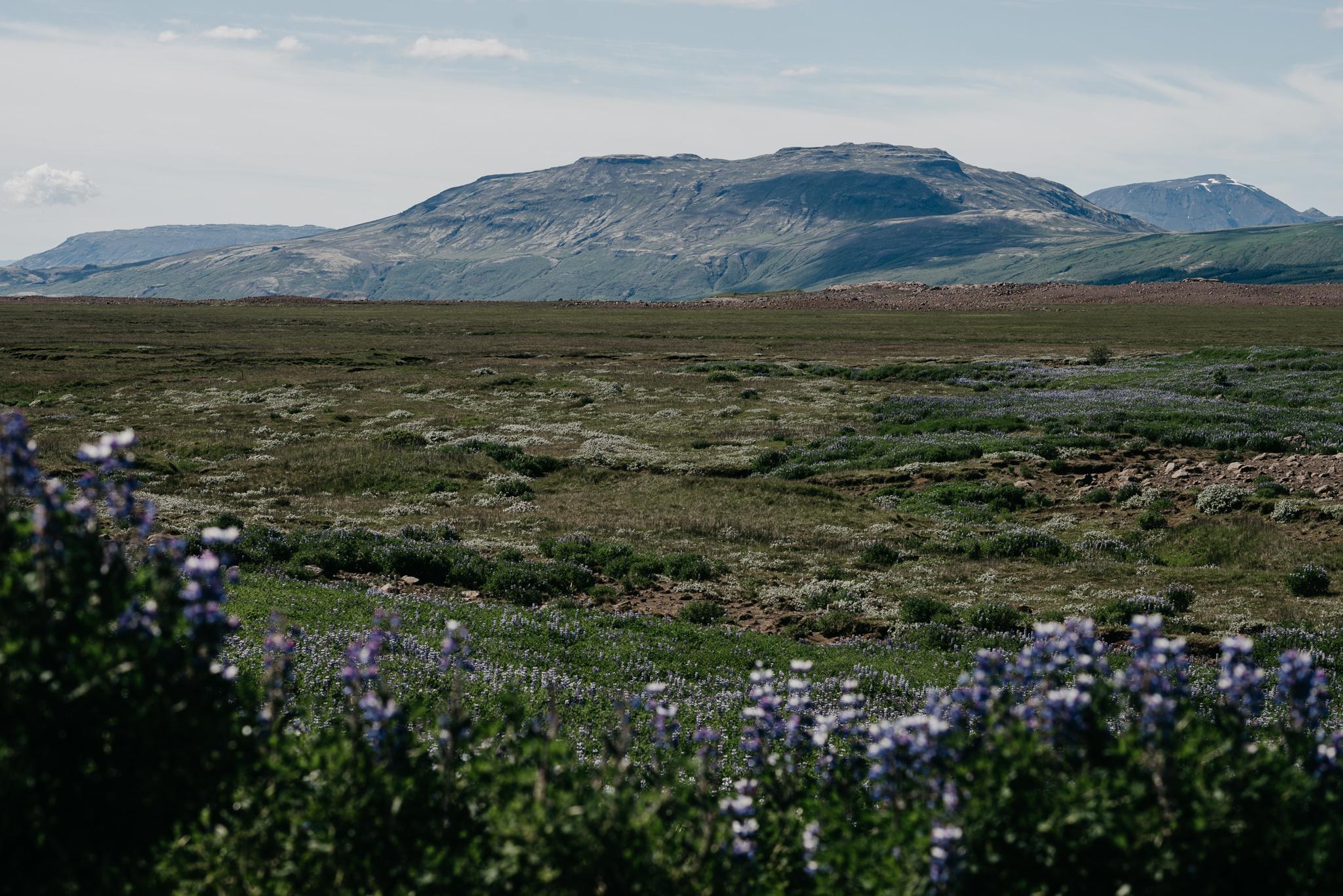 Iceland2017-12.jpg