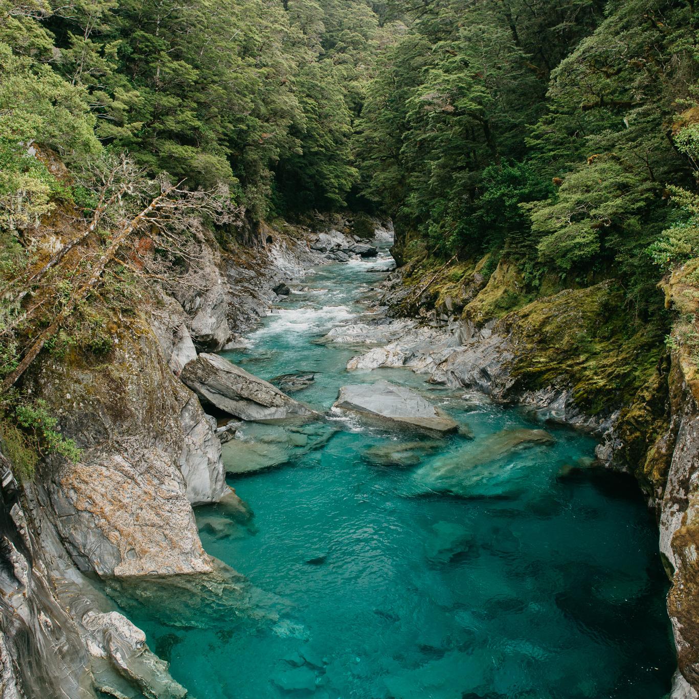 NZ_trentandjessie.com