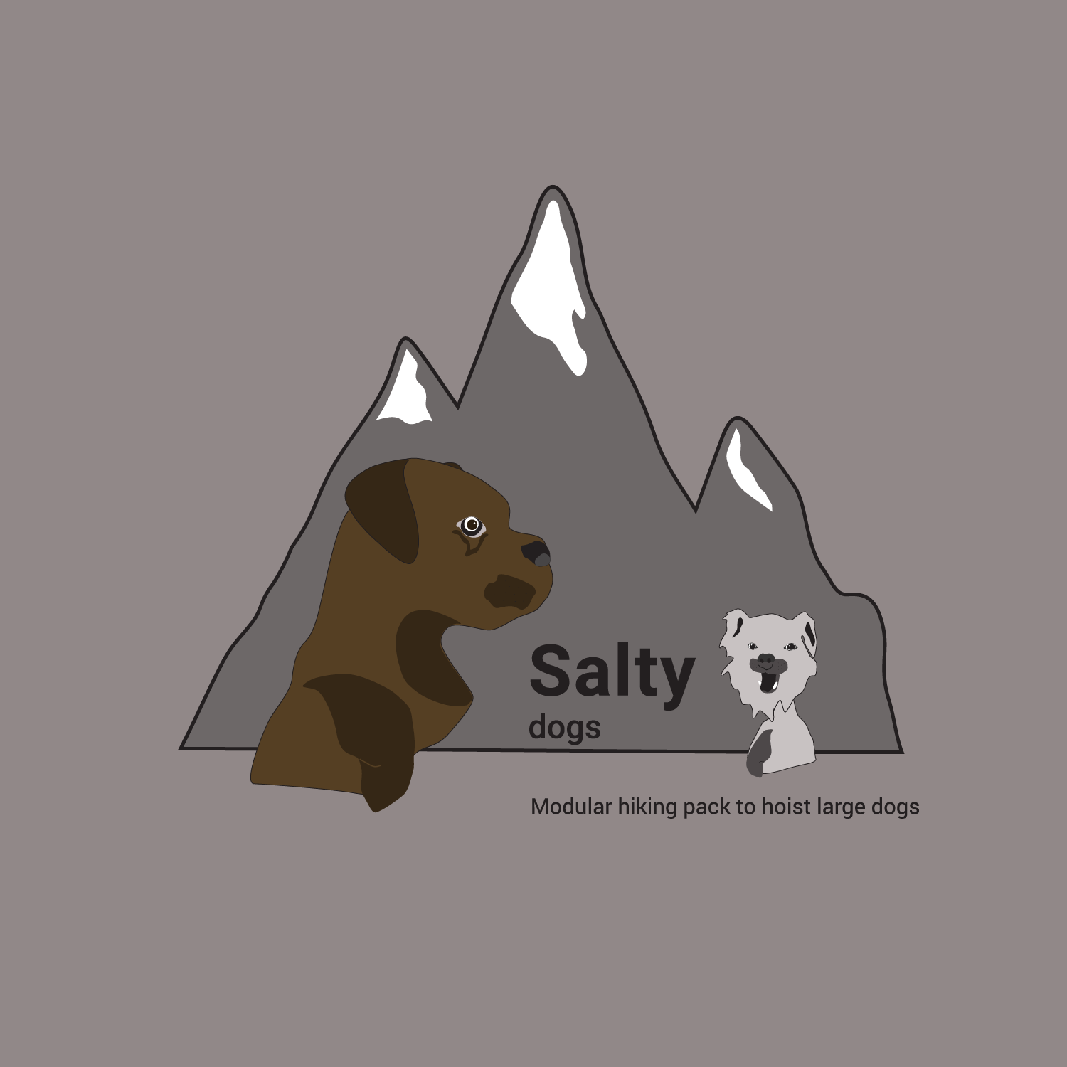 Salty_Cover-02-02.png