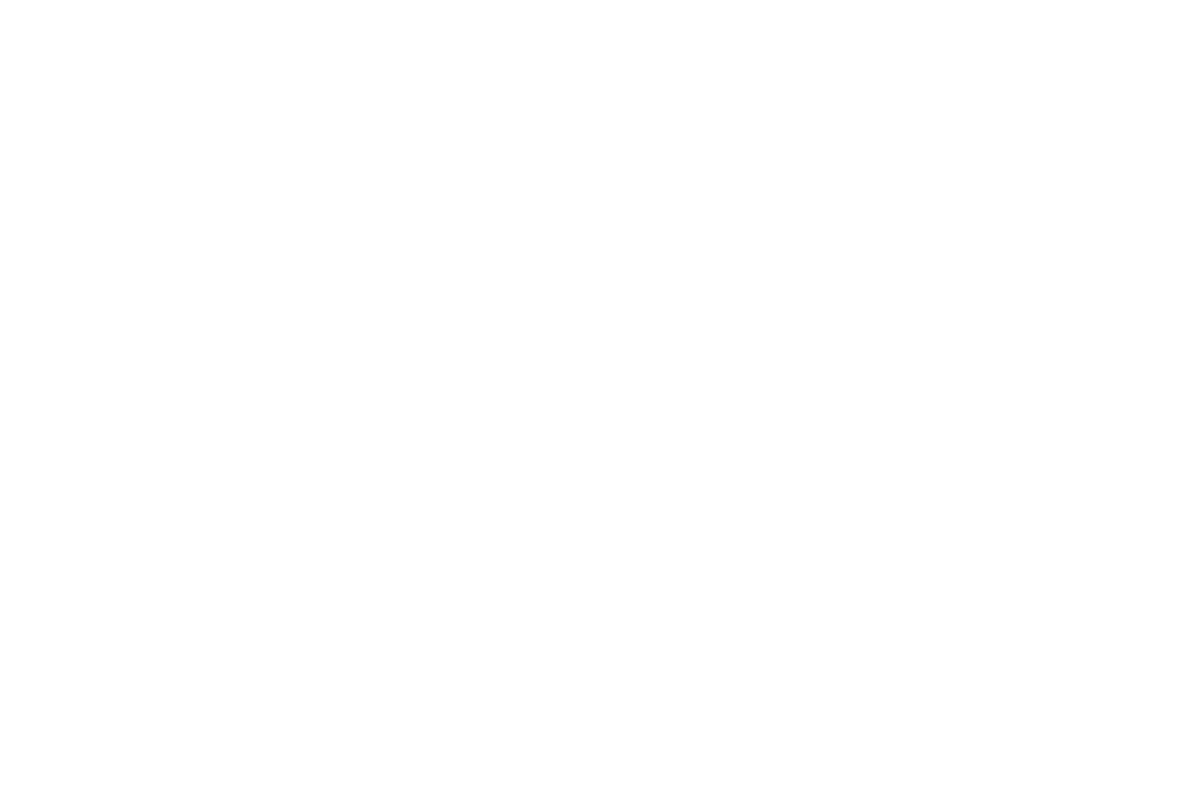 OFFICIAL SELECTION - BLACK EXCELLENCE FILM FESTIVAL - 2018.png