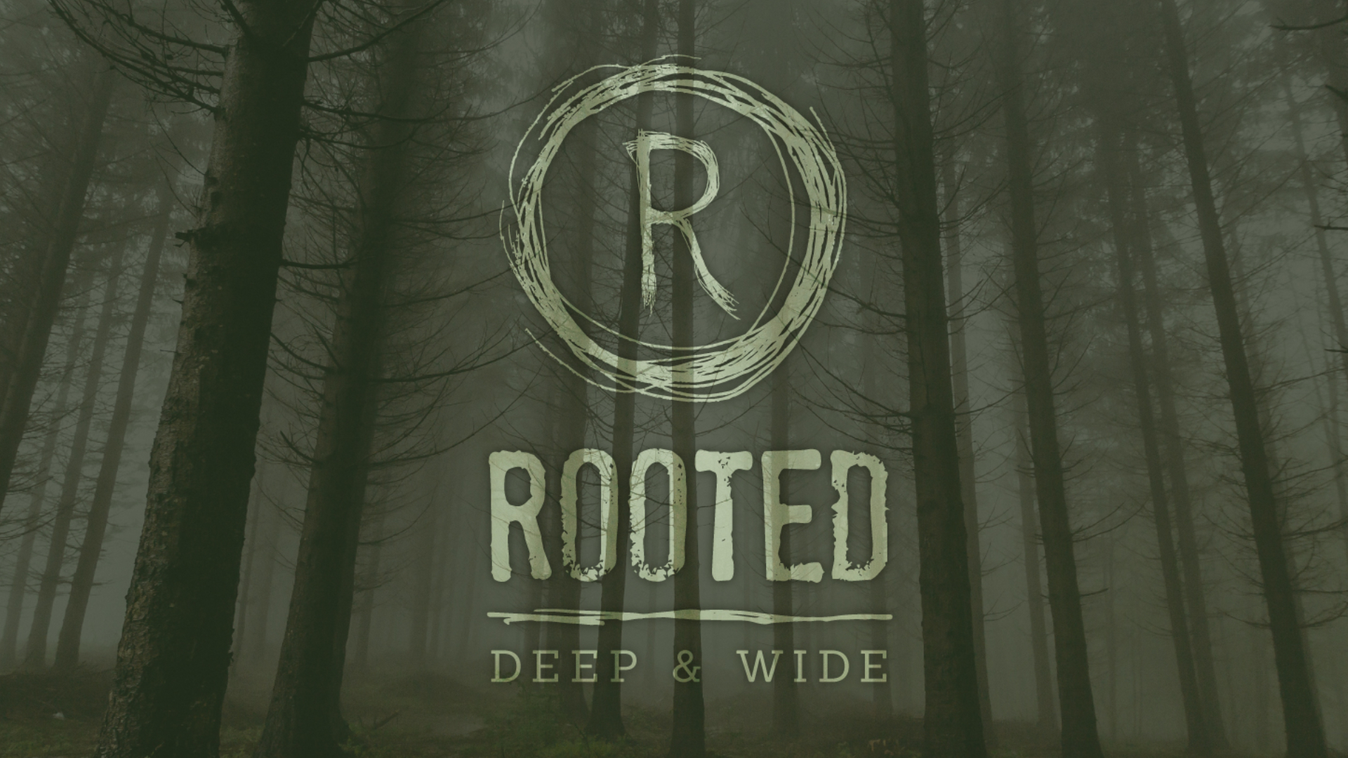 rooted 1920x1080.jpg