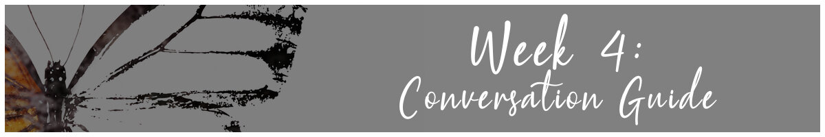 transformed study conversation guide - 4.jpg