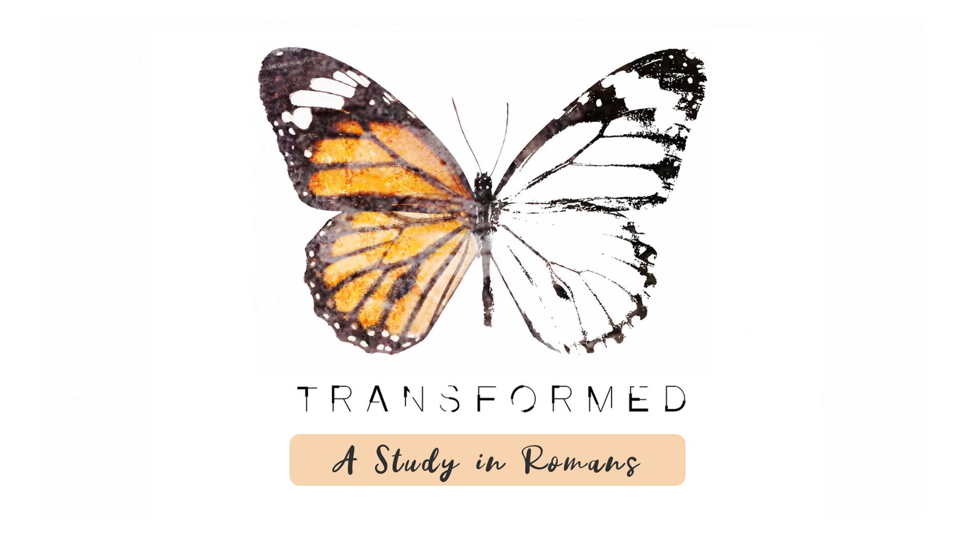 Transformed Study.jpg