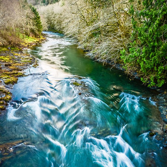 Good habitat and strong fish are two of the most important aspects of Tillamook County's natural resource heritage. The same natural resources are the backbone of our economy. From fishing to farming to forestry to construction, the Salmon SuperHwy helps keep industry moving. 📷 @schnitzerphoto #tillamookcoast #traveloregon #gofishing